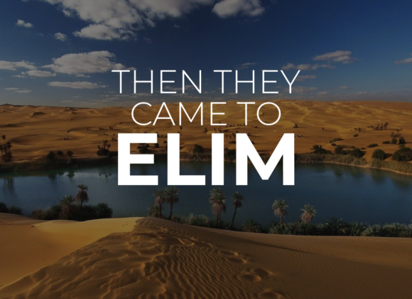 THEN THEY CAME TO ELIM